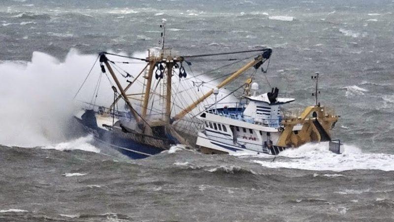 Akkoord-nieuwe-vangstquota-voor-2020