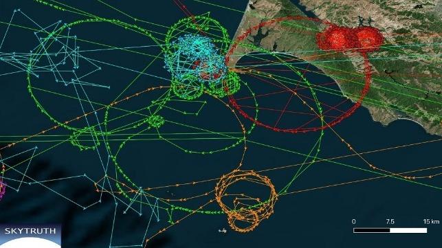 Het cirkelfenomeen zoals dat werd gerapporteerd door de AIS-systemen van de twaalf schepen (foto: SkyTruth/RNT Foundation).