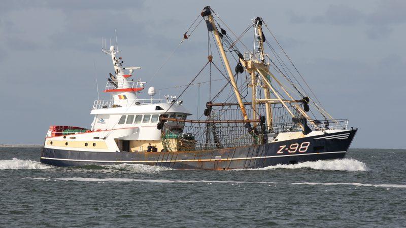 De boomkorkotter Z-98 is één van de schepen die door nieuwbouw zal worden vervangen. (Foto Bram Pronk)