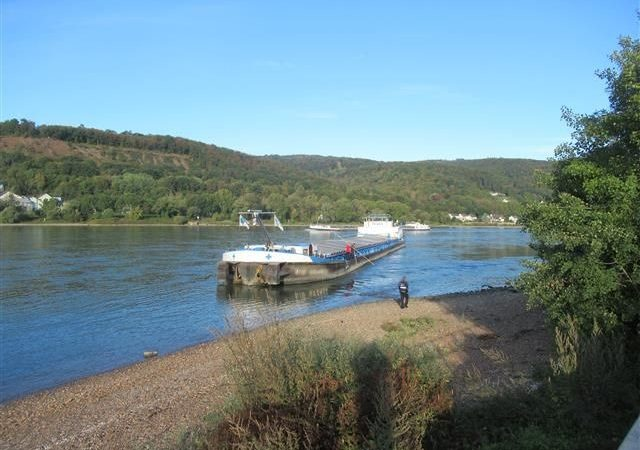 Het schip kwam vast te zitten op de rechter Rijnoever. (Foto Wasserschutzpolizei Koblenz)