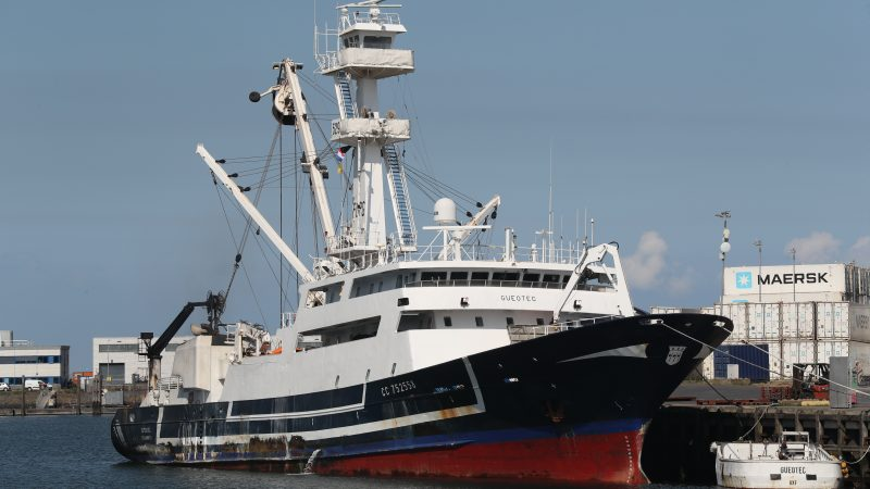 De tonijnenjager Gueotec is een vreemde verschijning in de haven van IJmuiden. (Foto Bram Pronk)