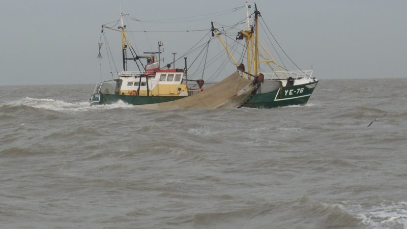 Wie in de Zeeuwse delta vist, vist in beschermd natuurgebied. Volgens natuurorganisaties is niet goed onderzocht of dat wel kan zonder natuurschade aan te richten. (Archieffoto W.M. den Heijer)