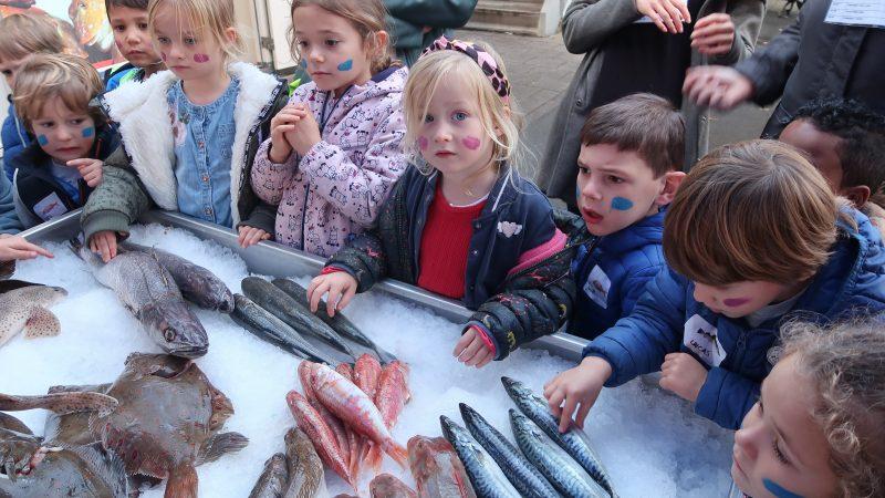 Stichting Noordzeevis uit Scheveningen initieerde vorig jaar al een actie waarbij jonge kinderen kennis konden maken met diverse vissoorten uit de Noordzee. (Foto W.M. den Heijer)