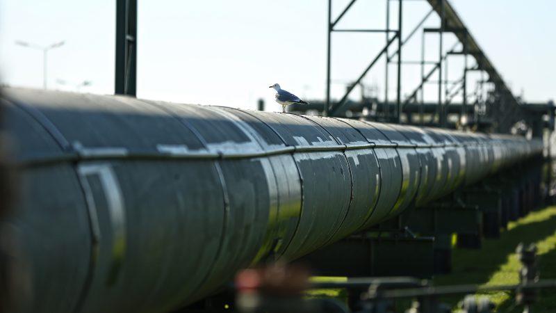 De gasinfrastructuur bij de haven van Den Helder leent zich goed voor de productie van waterstof. (Foto NHN)