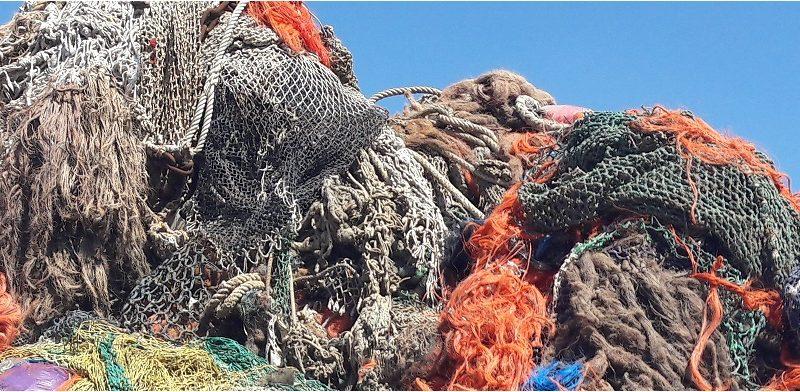 Zeedieren raken vaak verstrikt in visnetten. (Foto KIMO)