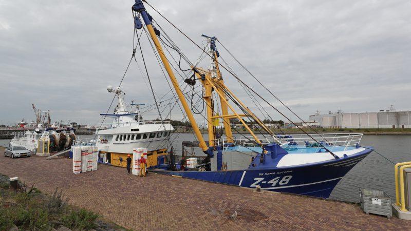 De Z-48 heeft net haar lading gelost en neemt lege viskisten aan boord voor de volgende visreis. (Foto Bram Pronk)