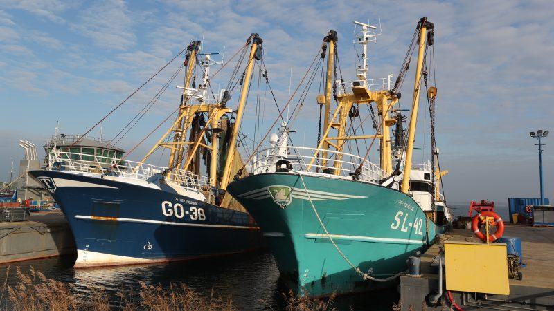 De GO-38 en SL-42 liggen allebei met ernstige defecten aan de voortstuwingsinstallatie bij Maaskant Shipyards in Stellendam. (Foto Bram Pronk)