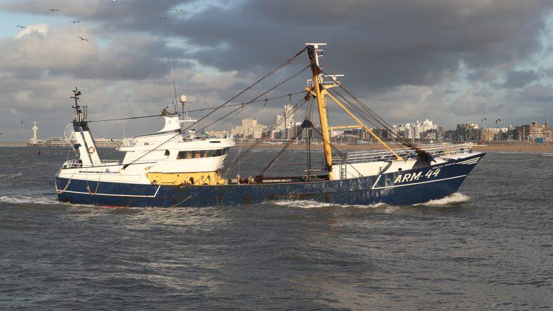 De ARM-44 loopt in een najaarszonnetje de haven van Scheveningen binnen. (Foto Bram Pronk)