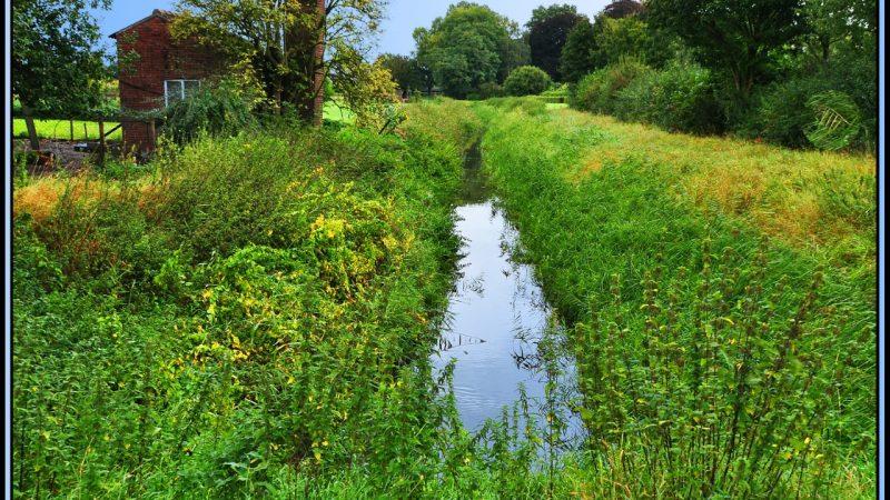 Bij Venlo is nog een onbruikbaar stukje te vinden van de Fossa Eugenia, ofwel het Rijn-Maaskanaal. Het is een Rijksmonument onder nummer 37182 en bevindt zich oostelijk van de weg naar Straelen. (Beeld Jeroen Bons)