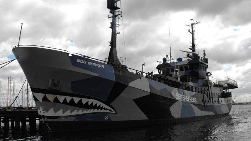 De Bob Barker van Sea Shepherd voerde actie tegen illegale visserij toen het werd aangevallen. (Foto Wikipedia)
