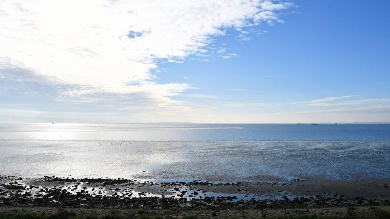 De Oosterschelde is een Natura 2000-gebied, waar natuur voorrang krijgt boven menselijke activiteiten. Natuurmonumenten wil de garnalenvissers dan ook liever weg hebben. Maar de argumenten daarvoor hielden geen stand bij de Raad van State. (Foto HVZeeland)