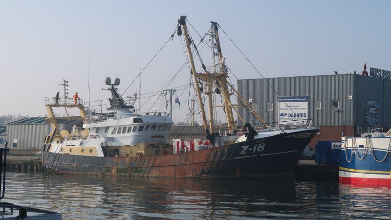 De boomkorkotter Z-18 heeft in krap twee maanden tijd al zes keer fikse hoeveelheden vis in Thyborøn afgeslagen. (Foto W.M. den Heijer)