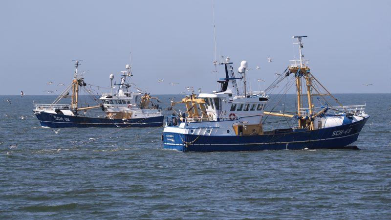 De Europulskotters SCH-18 en SCH-45 trekken samen op in het hoge noorden. (Foto Bram Pronk)