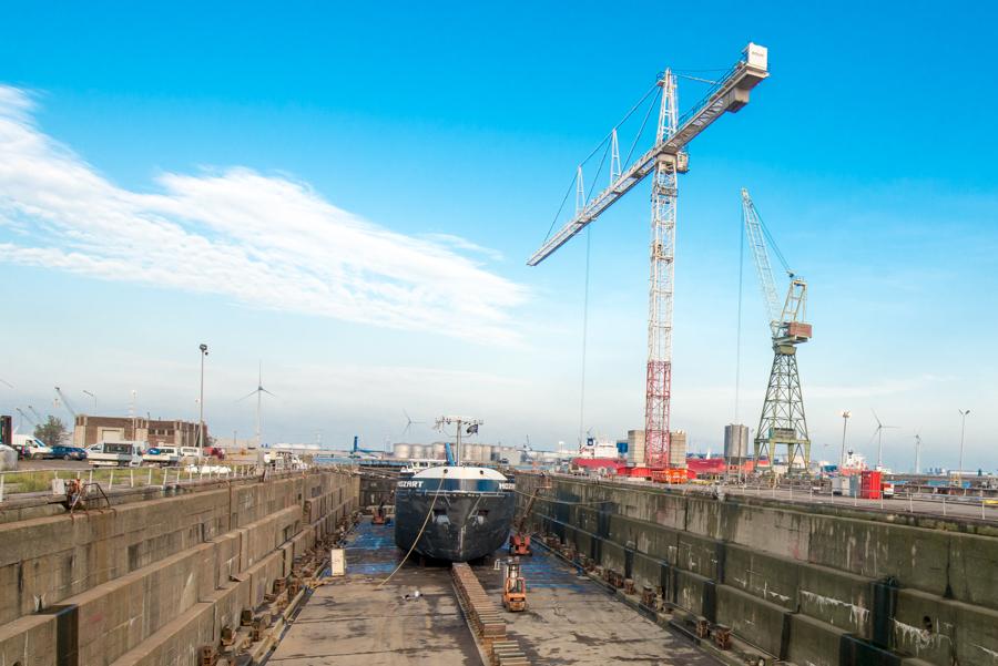 EDR Antwerp Shipyard telt een personeelsbestand van 135 werknemers, dat op piekmomenten op kan lopen met 350 mensen in onderaanneming. Het bedrijf boekte in 2019 een omzet van 55 miljoen euro. 60 procent is afkomstig uit de activiteiten op de werf, 30 procent uit havenherstellingen en 10 procent uit onderhoud en herstellingen door werknemers die met de schepen meevaren.