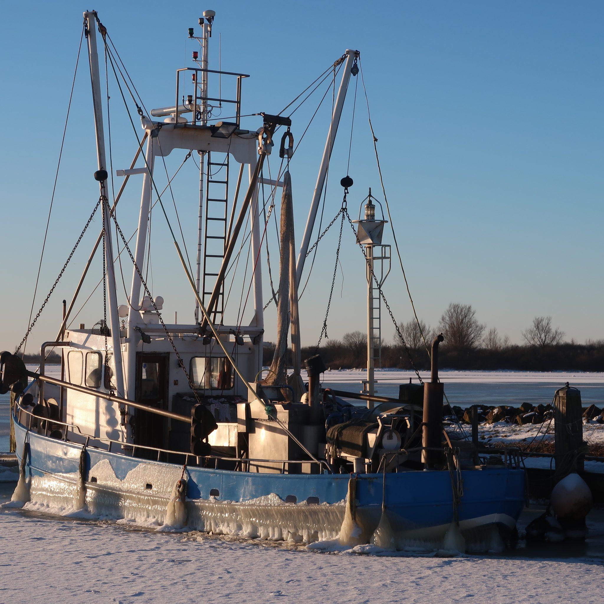 De LO-4 lag nog niet zo lang geleden dik in het ijs aan de binnenkant van de sluizen van Lauwersoog. (Foto W.M. den Heijer)