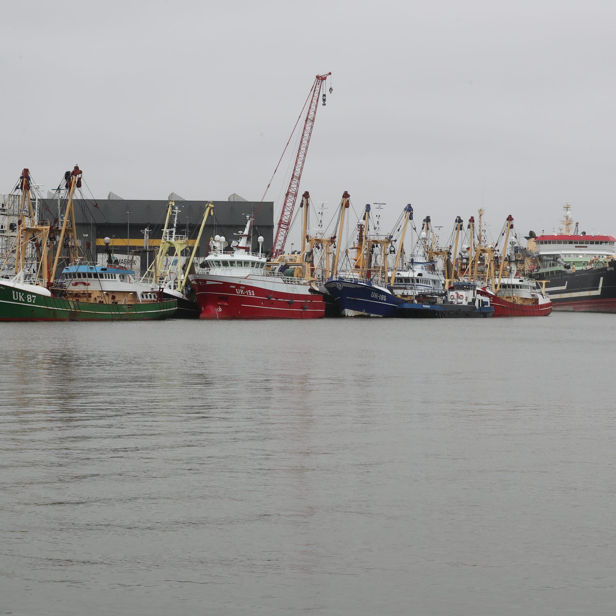 Urker (vlag)kotters tijdens het weekend afgemeerd in IJmuiden. (Foto Bram Pronk)