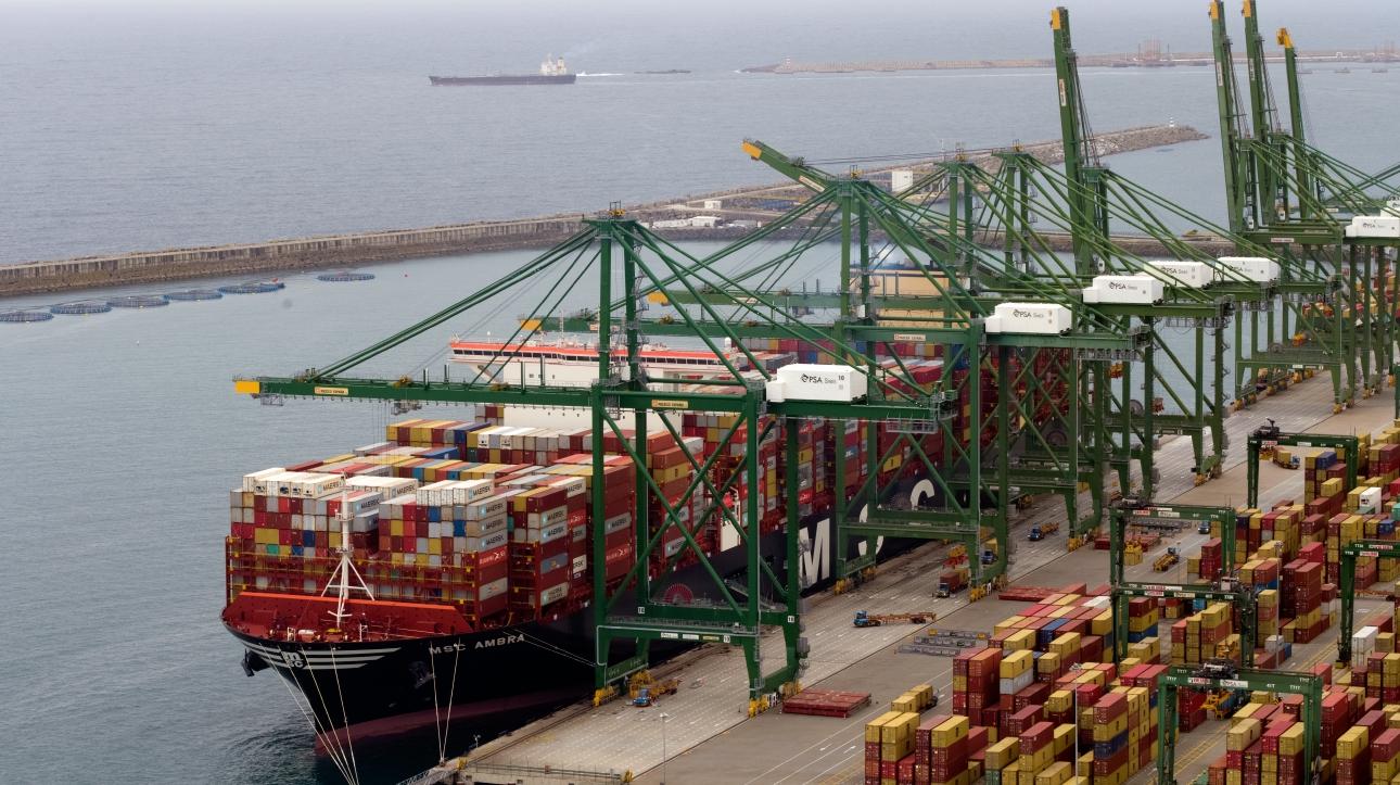 De containerterminal in de Port of Sines. (Foto Port of Sines)