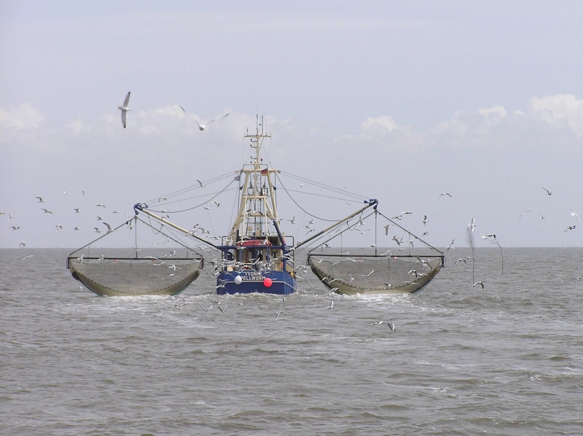 Het voor o.a. Nederland bestemde geld gaat naar de Zuid-Europese dagen (Foto Wikipedia)