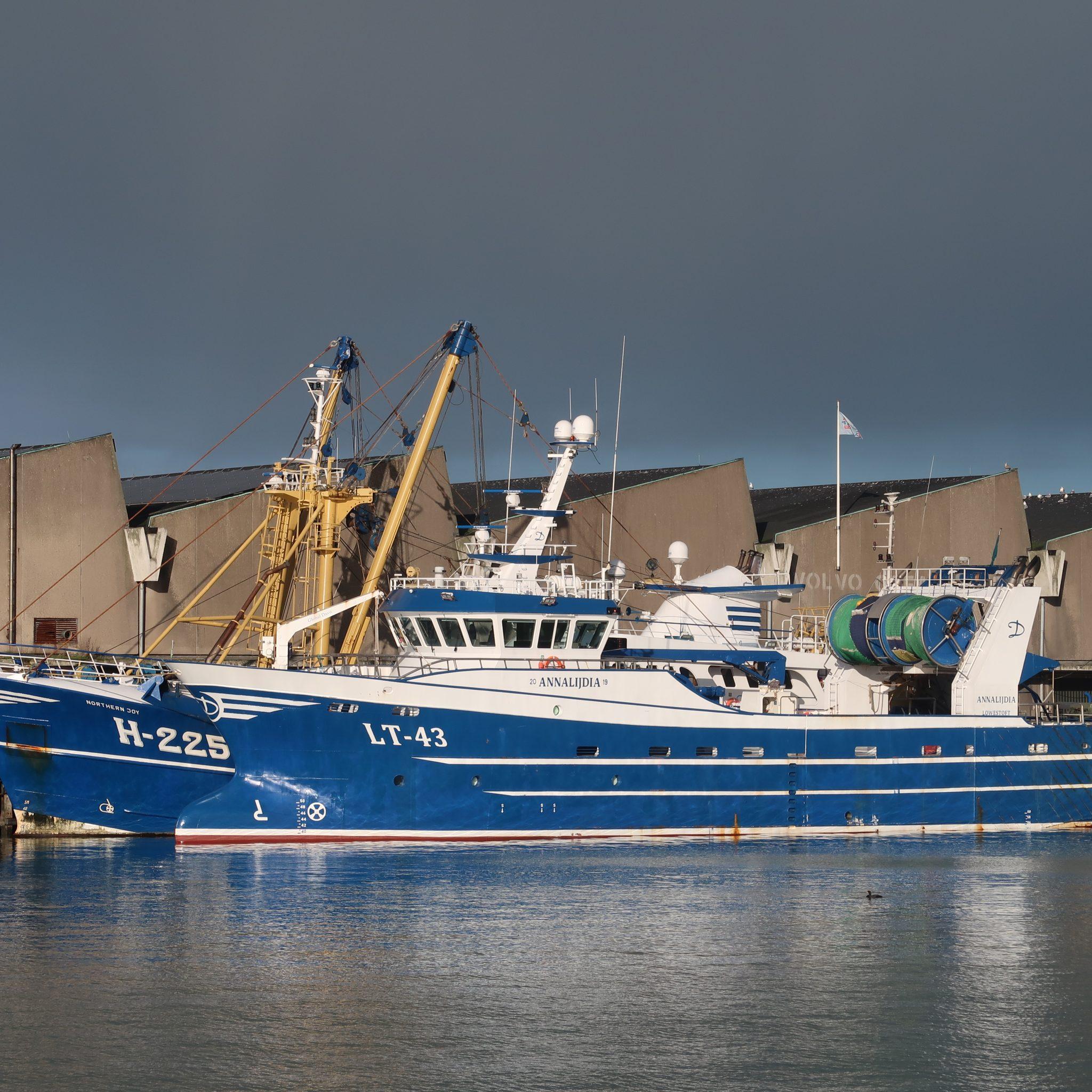 De aanvoer van de LT-43 in Newlyn zorgde begin dit jaar voor veel onrust. (Foto W.M. den Heijer)
