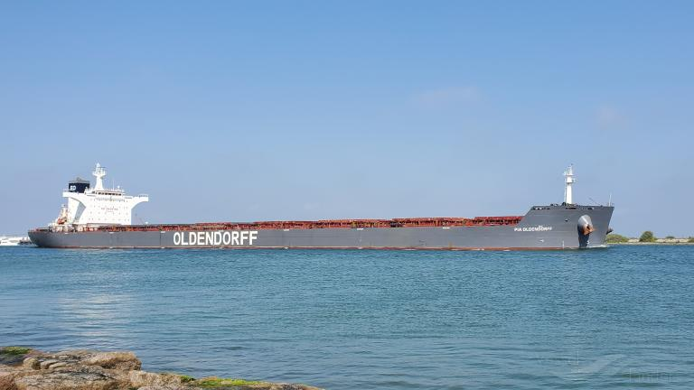 De Pia Oldendorff loste kolen in juni. (Foto VesselFinder)