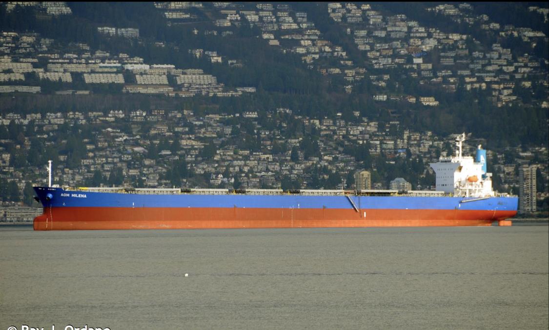De Griekse rederij Appololina Lines heeft de Wisdom Diva verworven voor circa 17 miljoen dollar.