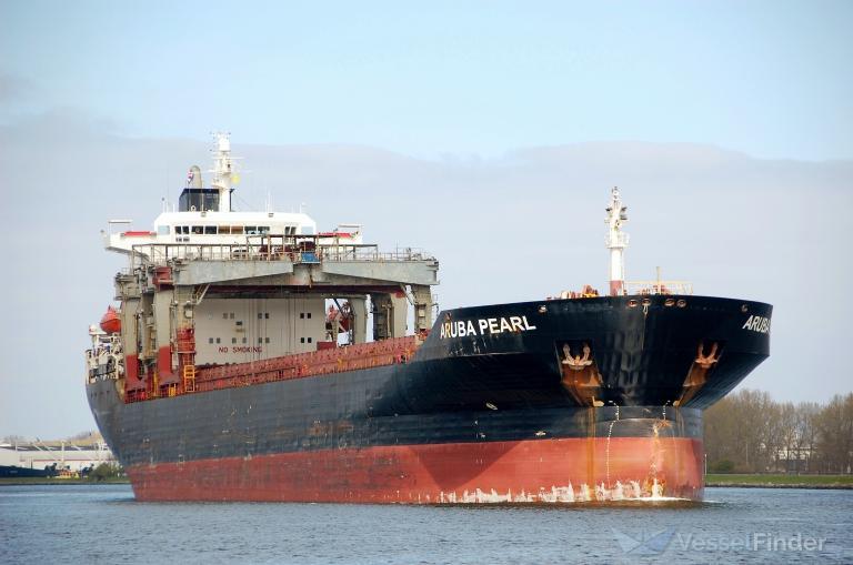 De Aruba Pearl kwam als enige schip deze week erts lossen bij EMO. (Foto Vesselfinder)