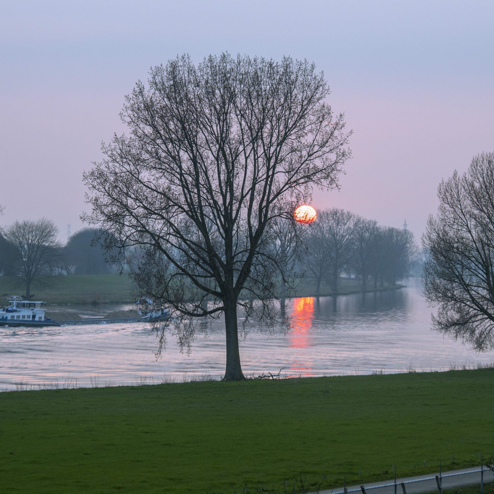 Ter illustratie: een binnenvaartschip op een zonnige dag vaart over de Maas in Limburg. (Foto ANP/Patricia Rehe)