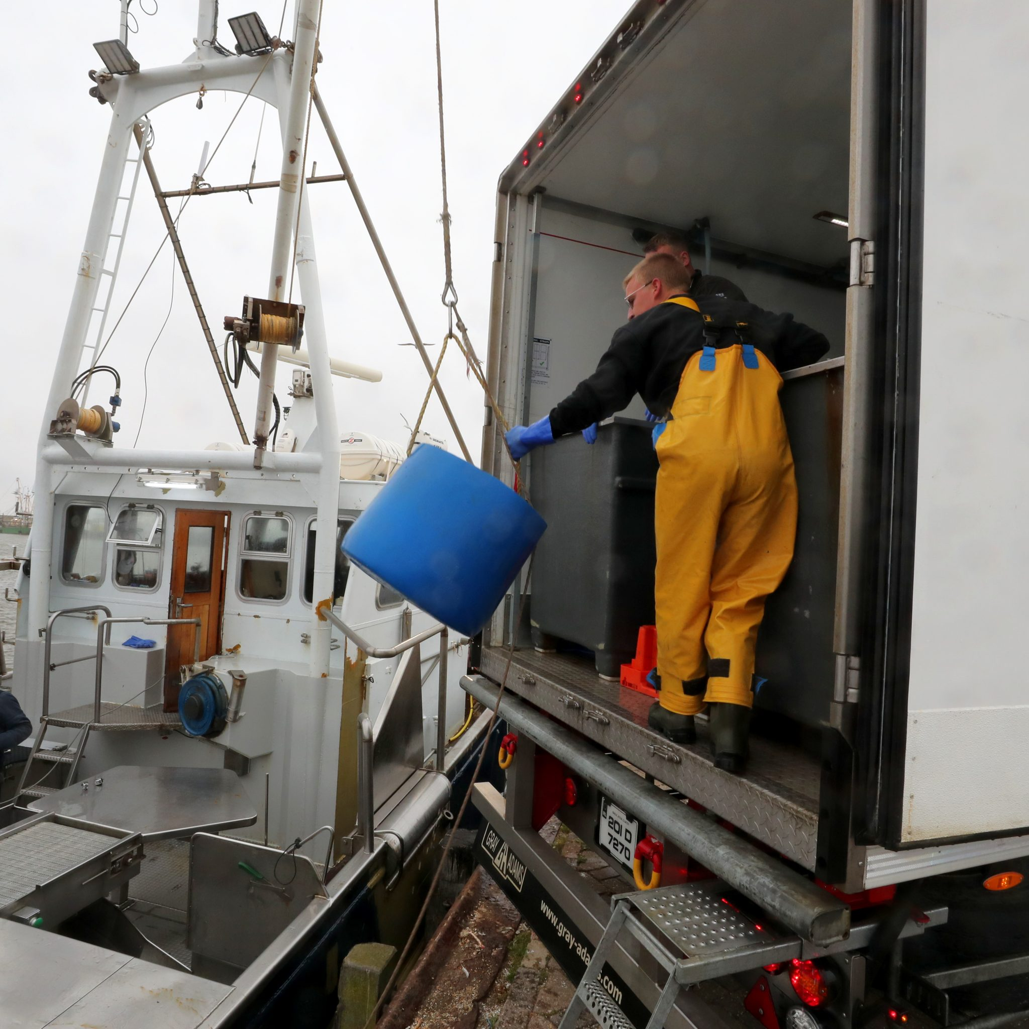 De krabben worden gelost in leeftanks in de vrachtauto, met Pau van Slooten aan dek. (Foto Bram Pronk)