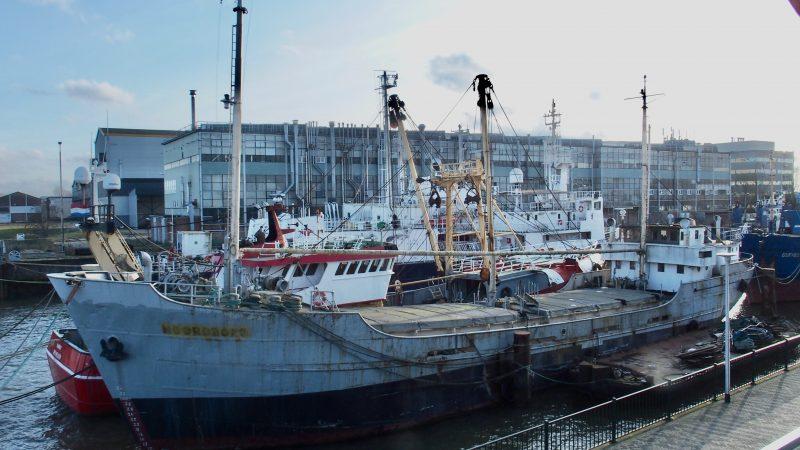 Er is al bijna 34.000 euro binnengekomen voor de redding van de Noordborg. (Foto Patrick Naaraat)