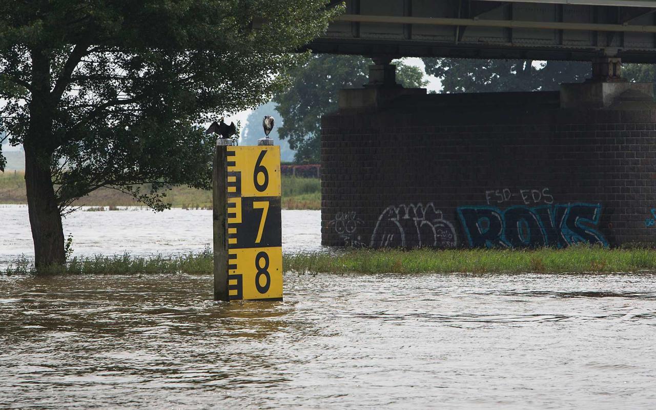 Ook op de Rijn is de scheepvaart verrast door de onverwachte hoge waterstanden. (Foto Evofenedex)