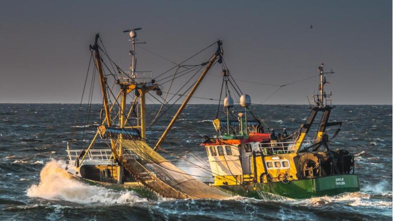 Het geschil tussen het ministerie en de garnalenvissers speelt al langer. Al in 2008 werden toegangsbeperkingen ingevoerd voor delen van de Voordelta om natuurwaarden te beschermen. (Foto Raad van State)