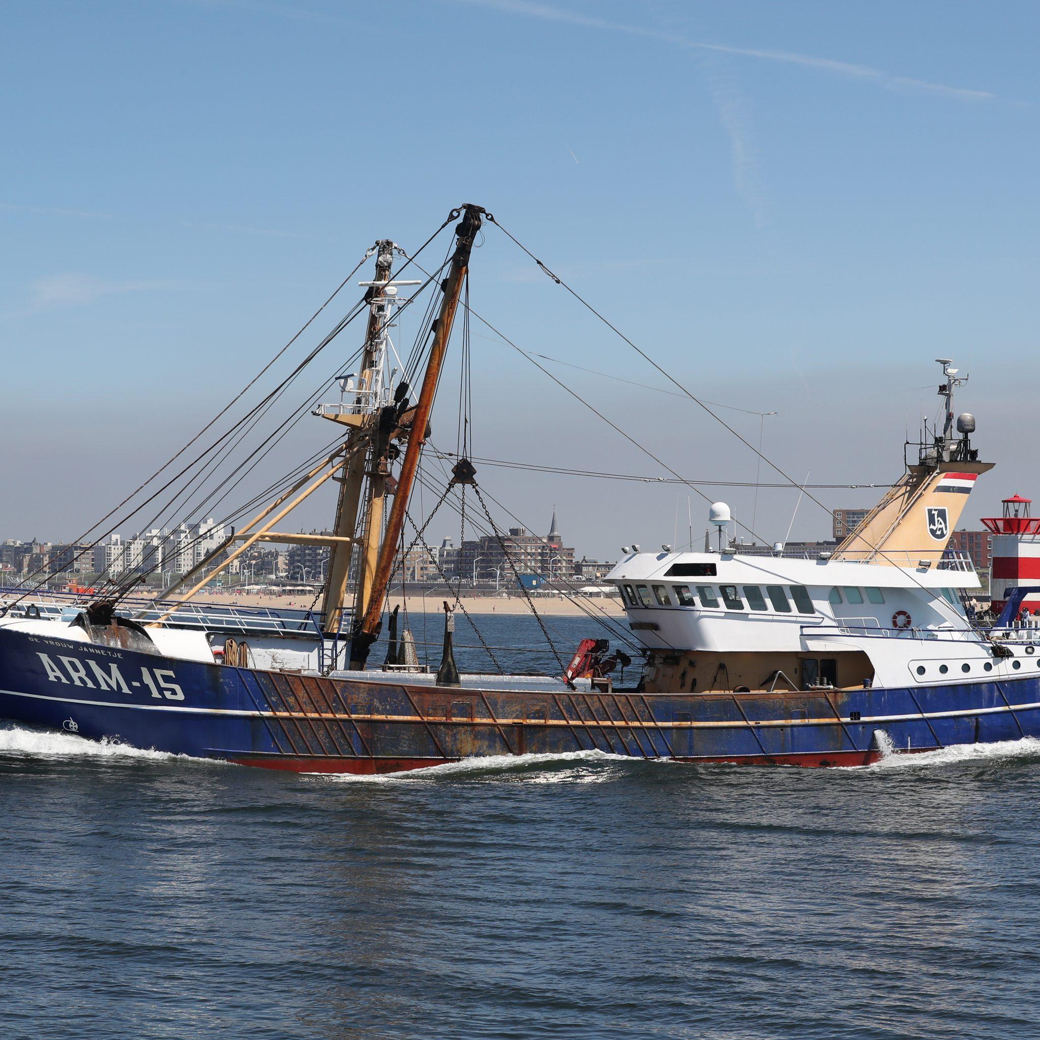 De ARM-15 verlaat Scheveningen na verkoop van de vangst. (Foto Bram Pronk)