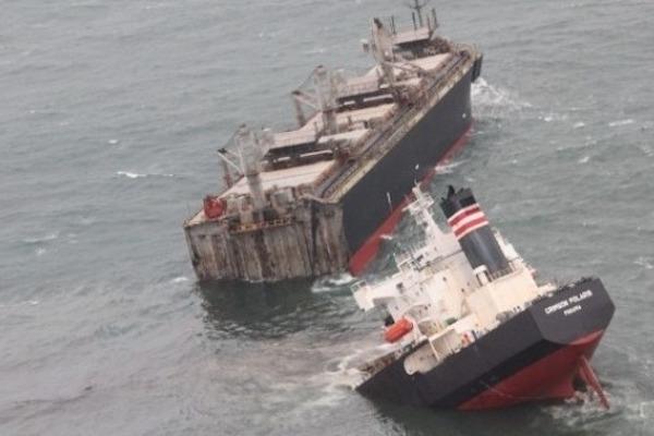Aanvankelijk meldde NYK dat alleen een hoeveelheid houtsnippers door een scheur in de romp in de oceaan was terechtgekomen.