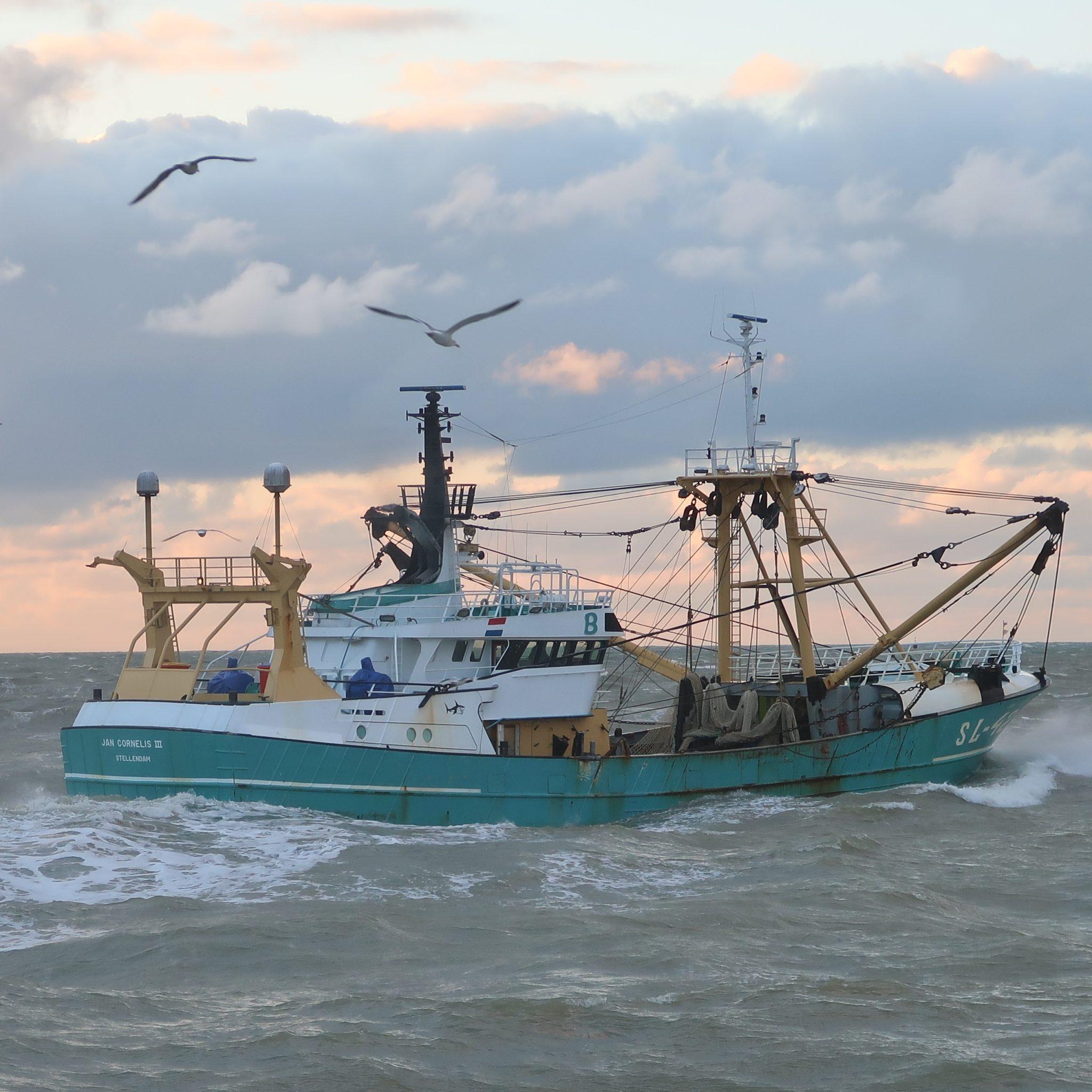 De SL-42 heeft al een paar keer een forse vangst aangeland en verkocht in Thyborøn. (Foto W.M. den Heijer)