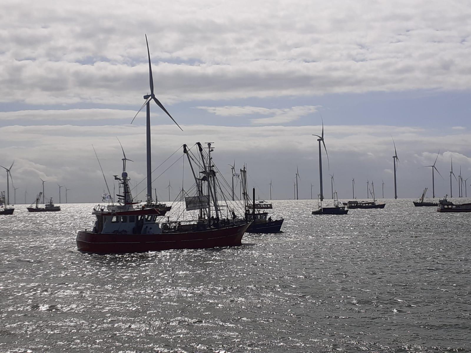 Tegen de achtergrond van het grote windpark Fryslân op het IJsselmeer verzamelen zich zo'n 60 kotters. (Foto W.M. den Heijer)