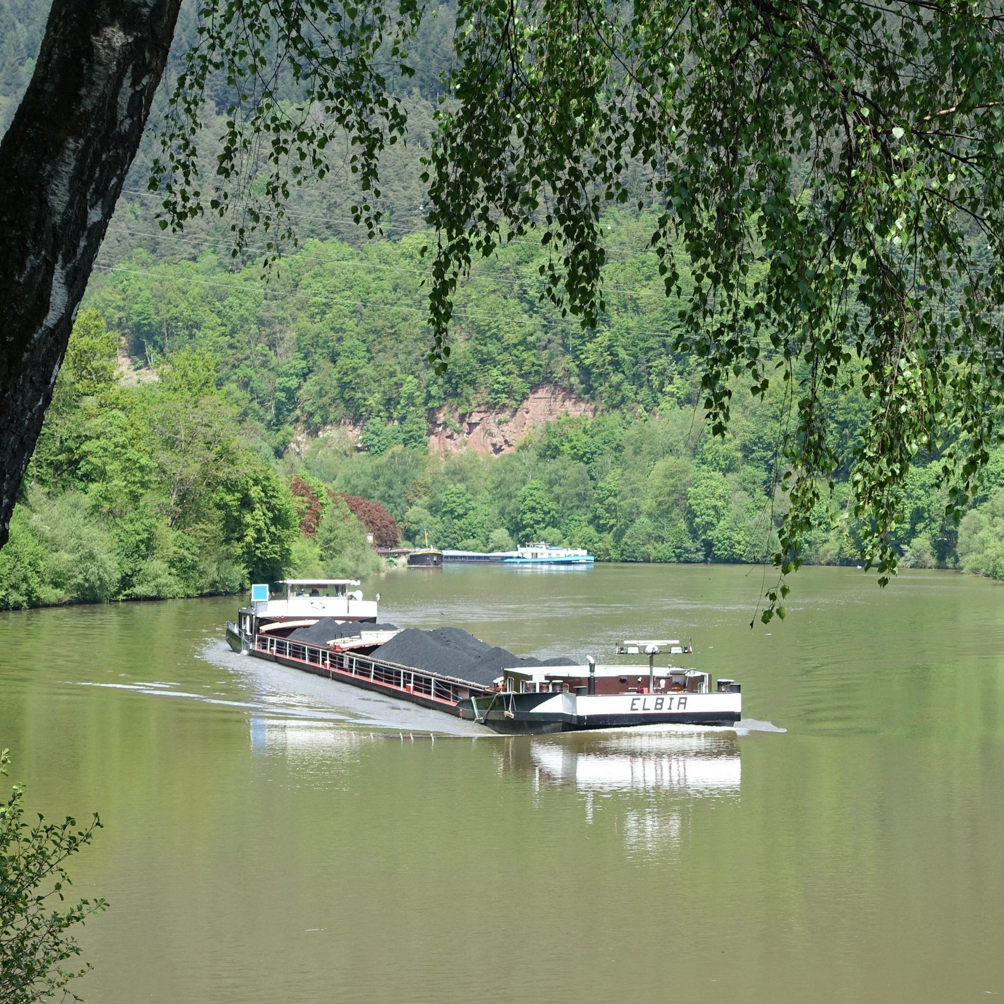 Vrachtschip op de rivier de Neckar, ter hoogte van Hirschhorn. (Foto Franzfoto/Wikimedia)